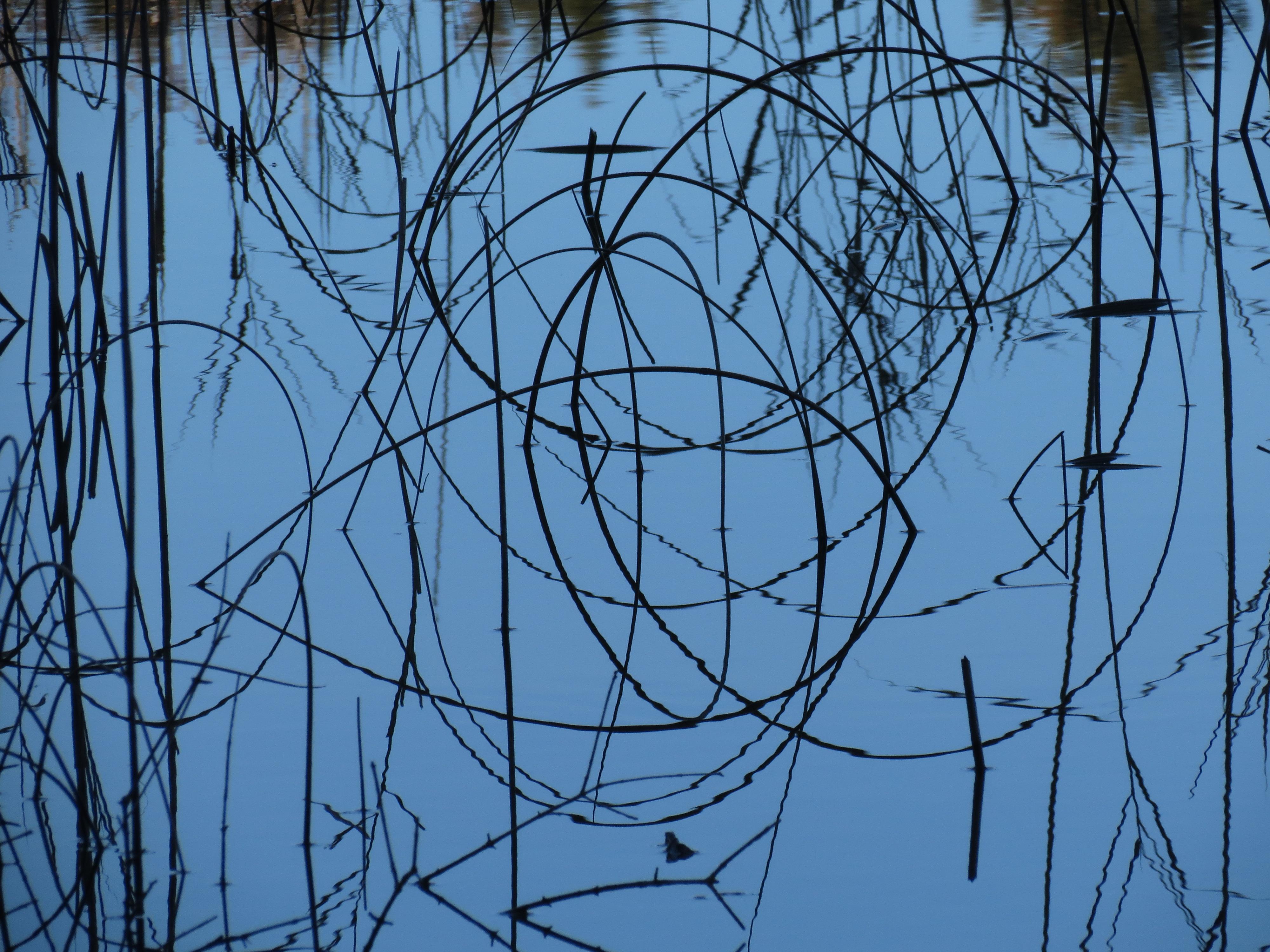 Composition en fil d'herbe
